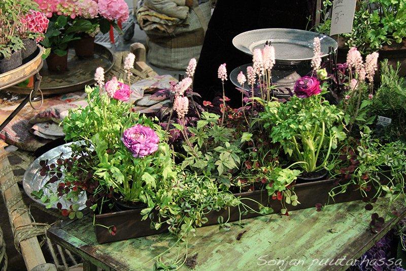 Väreissä näkyi paljon hempeätä vaaleanpunaista, vahvaa violettia ja tietysti heleätä keväänvihreää.